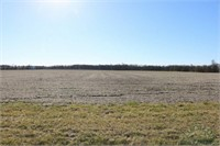 Marion County IL 77.5+- Acres - 1 Tract
