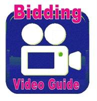 Auction Expert Bidding Tutorial