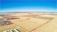 228.17 Acres m/l in Buena Vista County, IA Selling in 2 Trac