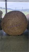 Hay & Grain Online Auction 1-13-21