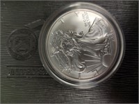 Ameican Eagle 20th anniversary gold & silver coin