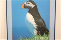 Puffin Poster Purchased in Iceland