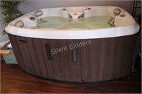 Marquis 4 Person Hot Tub Spa - Only Used Inside