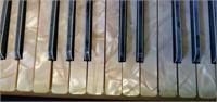 Vintage Starck Accordion & Hard Case