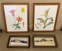 Botanical Prints and Farm Scenery