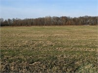 Marion County IL 99+- Acres - 1 Tract