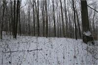 59 ± Acres   Timber Land   Louden Rd, Bloomington,