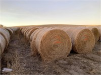 Panhandle Farmers & Ranchers HAY AUCTION