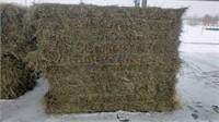 Hay & Grain Online Auction 2-3-21