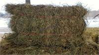 Hay & Grain Online Auction 2-10-21