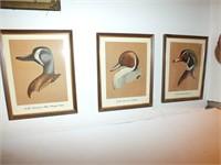DUCK HUNTING FRAMED ART