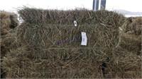 Hay & Grain Online Auction 2-17-21