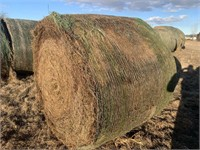 February 23 Hay Auction