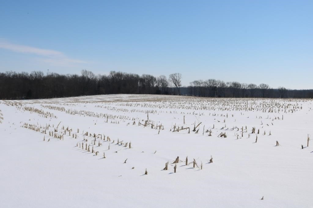 40+- Acres in White County, IL