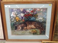Framed Print of Cat