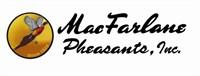 100 Bird Pheasant Hunt for 8 @ Milford Hills