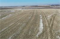 Matthew Klemme-74.24 M/L Acres Plymouth Co. Iowa Farmland