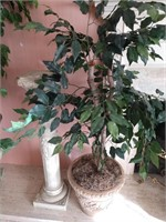 Faux Tree and Plastic Pedestal
