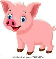 Nebraska MCC Auction 2021 Processed Pork