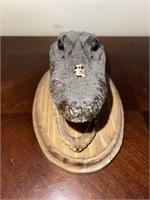 Aligator Head Bust
