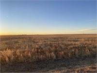 629.5 +/- acres Kit Carson County Dryland Farm