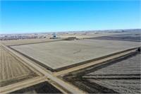 Camilla Degen Irrev. Trust-151M/L Acres of Sioux County Land