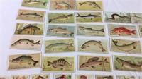 Rare 1890's Duke Cigarette Fishers & Fish Cards