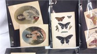 Large lot of antique prints and plates