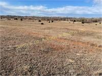 Sandplum Creek Land Auction