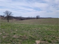 Online Only Land Auction Sullivan County
