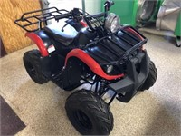 Little youth 125 2x4 for wheeler