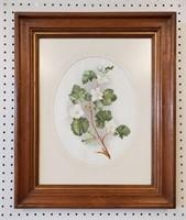 1901 La Grande Flora de Colorado Flower Prints