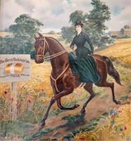 Antique Chromolithograph Best Baking Horse Woman