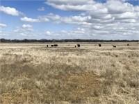 4/21 | 160 +/- Acres | Good Sm. Grain/Livestock Land