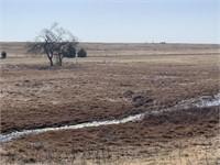 4/27   24.85 +/- Acs. of Grassland w/ Lg. Pond, Lucien Area