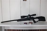 .22 Pellet Gun