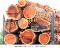 2021 Redwood Region Logging Conference