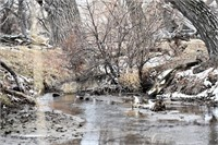 482 Acres Morrill County Wheatland & Pasture Land