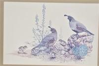 QUAIL Print by Artist Gary J. Dixon 1979