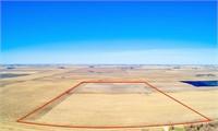 80.48 Acres in Silver Lake Township, Palo Alto County, IA