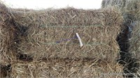 Hay & Grain Online Auction  4-28-21