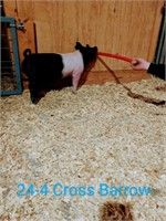 24-4 Cross Barrow