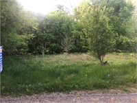 ABSOLUTE ONLINE REAL ESTATE AUCTION: 4.2 ACRES