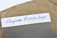"""(2) Owyhee Picture Jasper 6"""""""