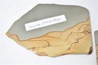 (2) Owyhee Picture Jasper Slabs