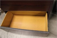 Bookcase and File Cabinet