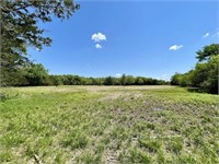 Double Springs Rd. - 42.23 Acres