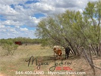 320+/-ac Tract