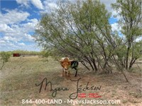 640+/-ac Tract