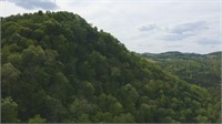 East Tennessee Riverfront Land For Sale at Auction